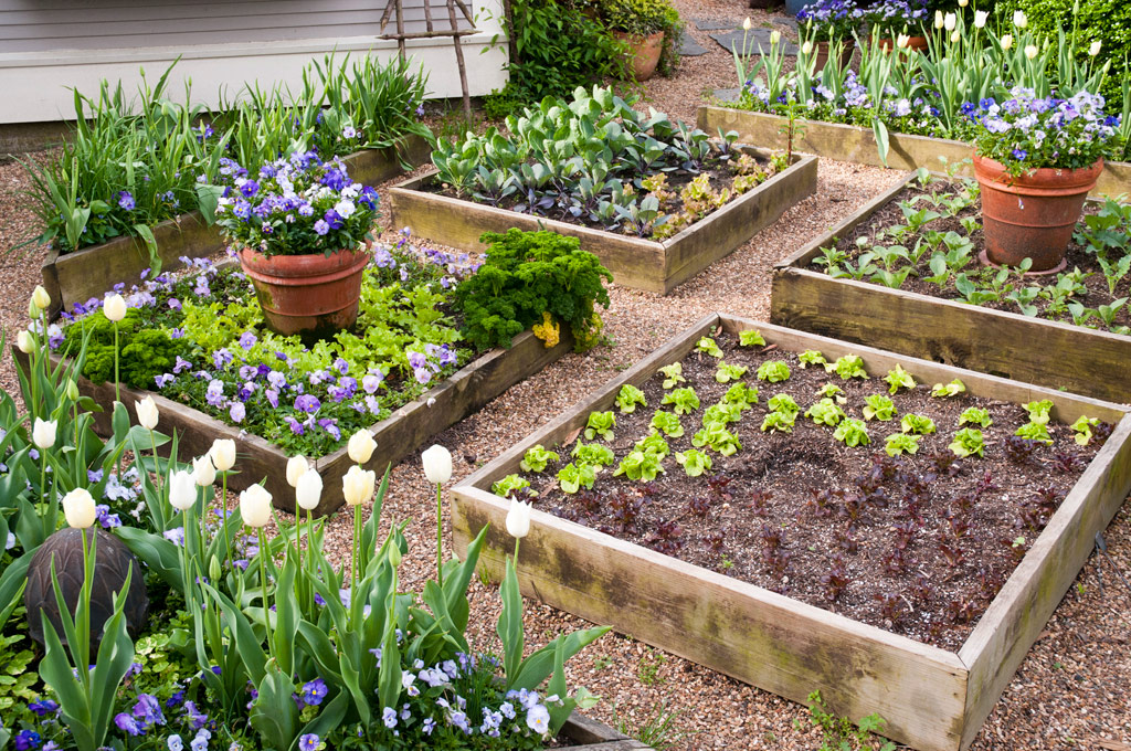 Garden Bed Design Garden ideas and garden design