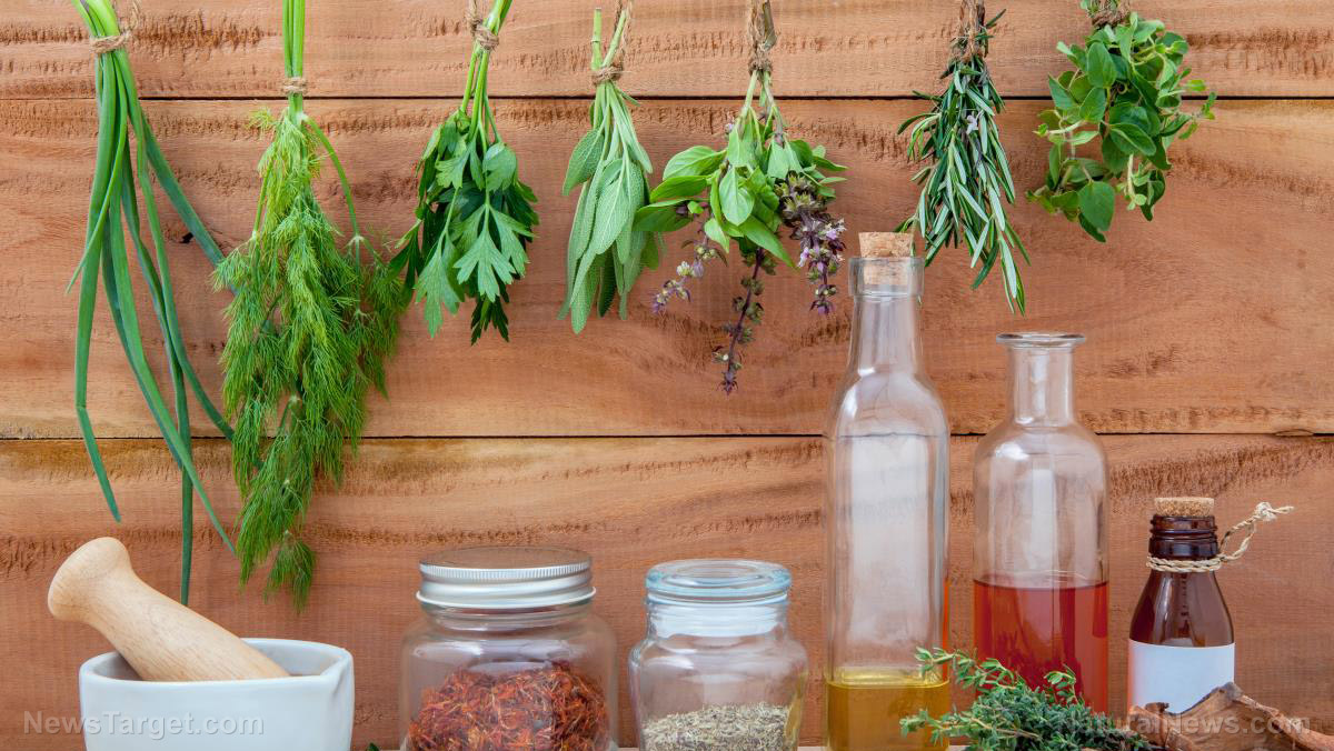 Homesteading 101: 8 Ways to preserve medicinal herbs.